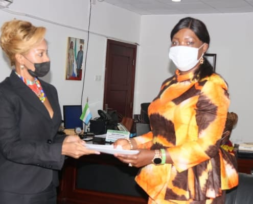 Presentation of credentials to the Deputy Minister of Foreign Affairs and International Cooperation